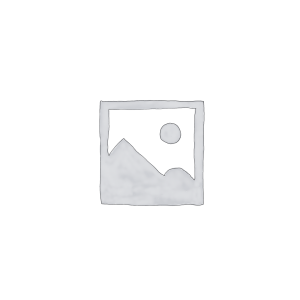CİVİC 1996-2001
